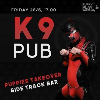 @puppyplay.sweden gör en 'pup-take over' hos oss under namnet K9 Pub. Kvällen är dedikerad till pup communityt men alla är självfallet välkomna. Vare sig du är en pup i gear eller social pup, en handler eller stray pup, pup-nyfiken eller enbart pup friendly. ...och ni handlers, inför träffen bör alla pups ha lärt sig sitta fint!  Vi på SideTrack vill fortsätta bedriva vårt arbete med att erbjuda en trygg mötesplats för vårt community. Antalet platser är tillsvidare begränsade och personalen agerar högst strikt. Saknas stjärterum ombeds du lämna lokalen. I framtiden kommer alla ni pups även få möjlighet att delta online!  Så kom gärna tidigt då det är begränsat med platser i lokalen. Läs mer om K9 Pub på https://puppyplay.se/